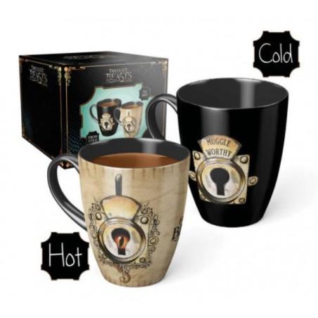Harry Potter Muggle Worthy Heat Change Mug
